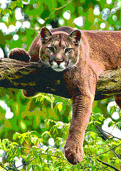 Mountain Lion In A Tree by Charles Shoup