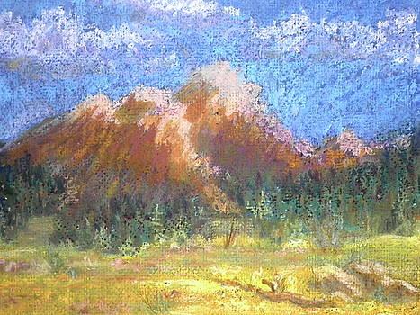 Mountain Meadow 2 by Curt Peifley