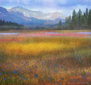 Mountain Meadow by R christopher Vest