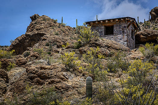 Mountain Overlook by Pat Scanlon