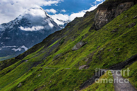 Mountain Path in the Swiss Alps by Gary Whitton