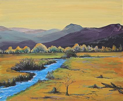 Mountain runoff by Bob Hasbrook
