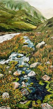 Mountain Stream by Nina Nabokova