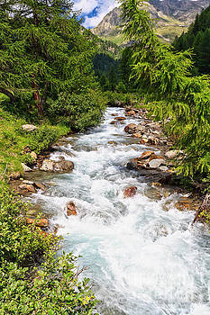 Mountain stream on summer by Antonio Scarpi