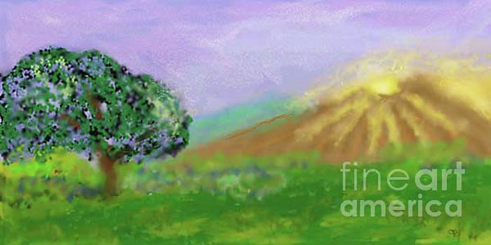 Mountain Sun by Arlene Babad