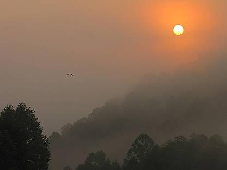 Shane Brumfield - Mountain Sunrise 2