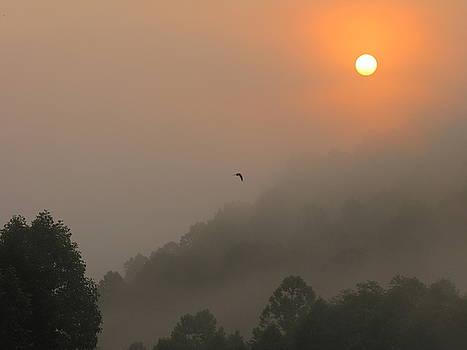 Shane Brumfield - Mountain Sunrise