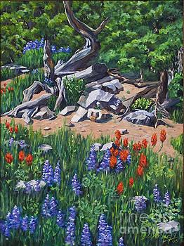 Mountain Trail by Jim Krug