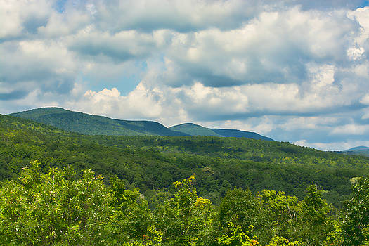 Mountain Vista in Summer by Nancy  de Flon