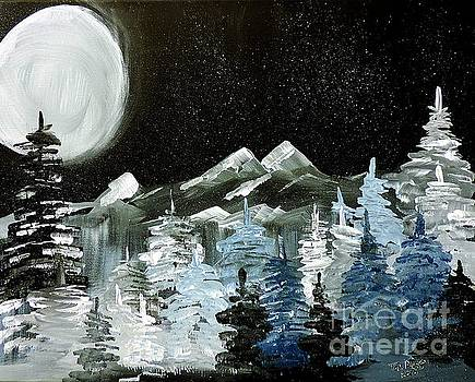 Mountain Winter Night by Tom Riggs