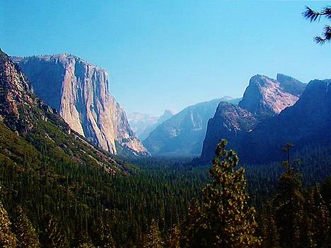 Mountains of Yosemite by Peggy Leyva Conley