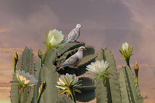 Mourning Doves on Flowering Cactus by Spadecaller