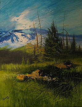 Moutain View by Robert Carver