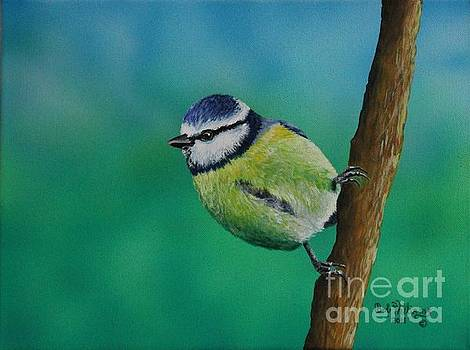 Mr. Agile........The Blue Tit by Bob Williams
