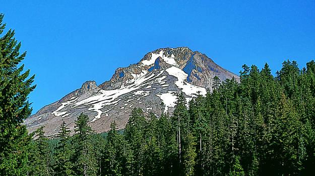 Mt Adams Close by Larry Darnell