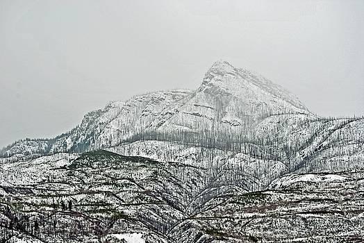 Mt. Ida by Michael Dohnalek
