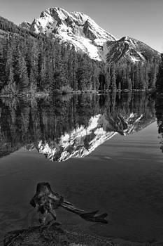 Sandra Bronstein - Mt. Moran - Morning Splendor