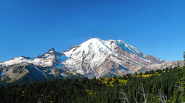 Mt Rainer by Larry Darnell