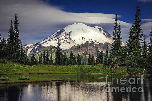 Mt Rainier in Washington by Joan McCool