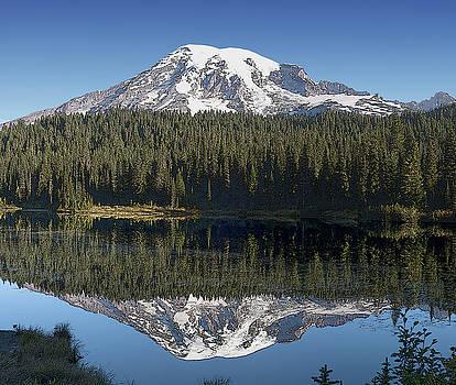Mt Rainier Reflection by Larry Darnell