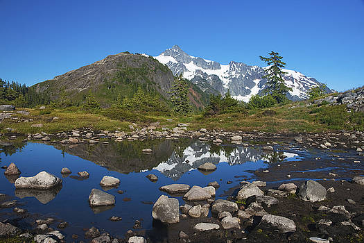 Mt. Shuksan Puddle Reflection by Scott Cunningham
