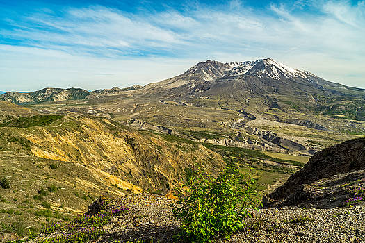 Mt St Helens Renewal by Ken Stanback