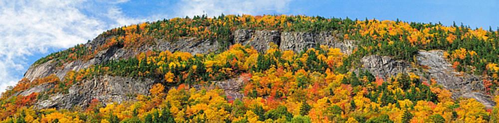 Mt Willard Cliffs pano by Shelle Ettelson