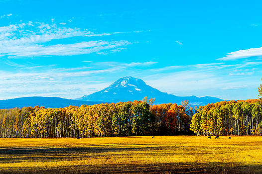 Mt.Adams in fall  by Hisao Mogi