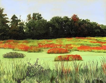 Mud Lake Marsh by Lynne Reichhart
