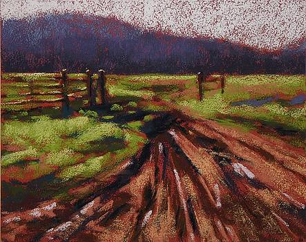 Muddy Tracks by Mary McInnis
