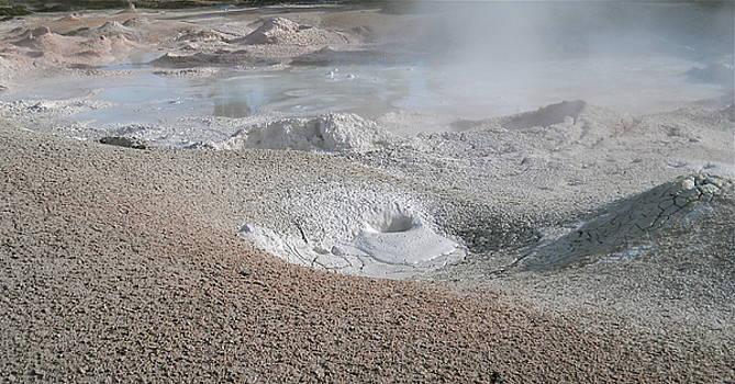 Mudpots of Yellowstone by Michele Myers