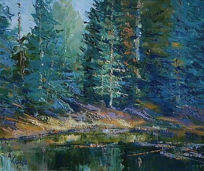 Mueller Pond by Gary Gore