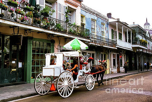 Mule and Buggy French Quarter by Thomas R Fletcher