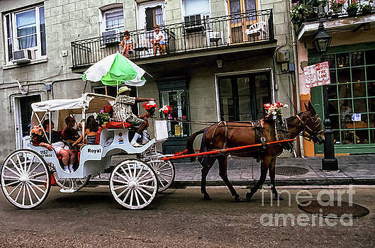 Mule and Buggy New Orleans by Thomas R Fletcher