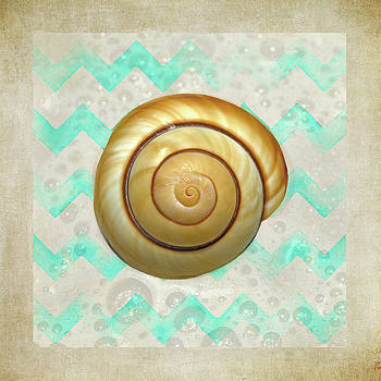Mullusk Sea Shell In Modern Waves by Sandi OReilly