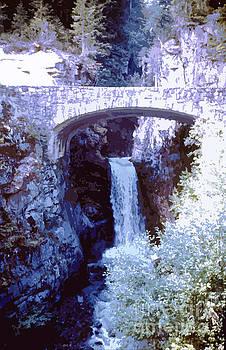 Christine Falls Mount Rainier National Park by Ann Johndro-Collins