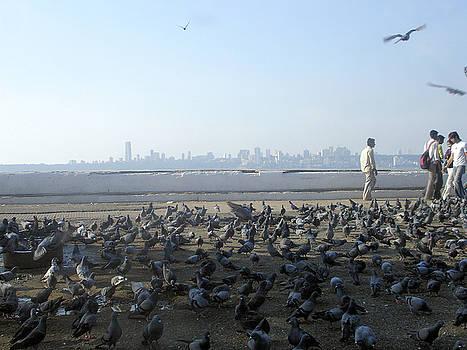 Mumbai by Daniel Solone