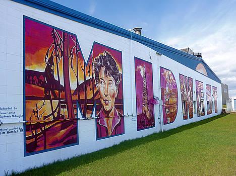Mural 12x120 feet Midwest  by Tim  Heimdal