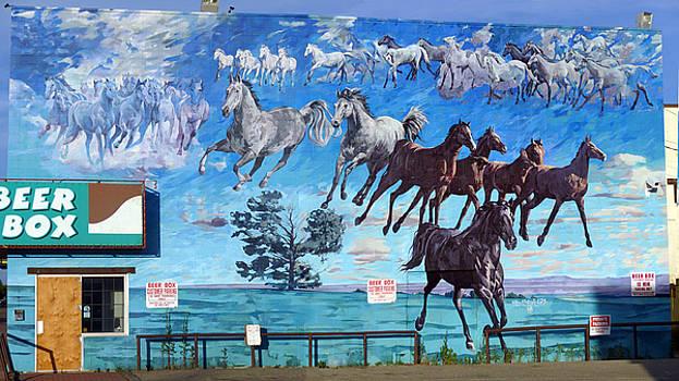 Mural 25 X 50 feet Equus Descending  by Tim  Heimdal