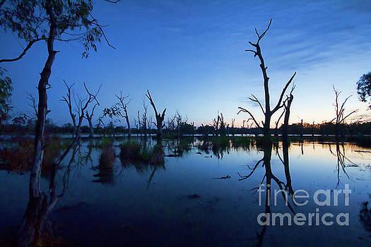 Murray River Sunrise by Douglas Barnard