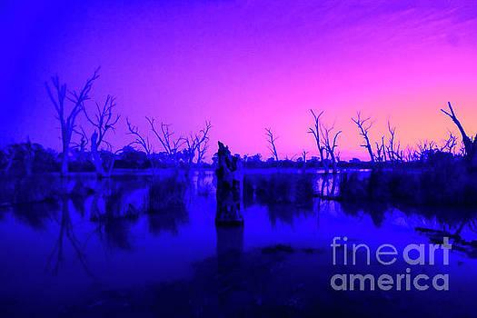 Murray River Sunrise V2 by Douglas Barnard