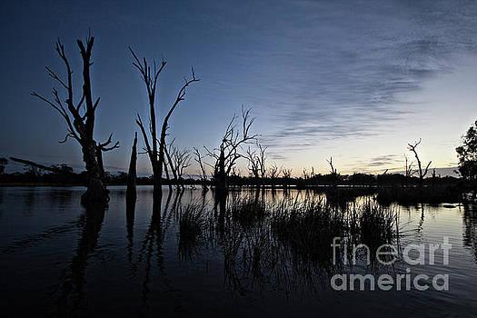 Murray River Sunrise V3 by Douglas Barnard