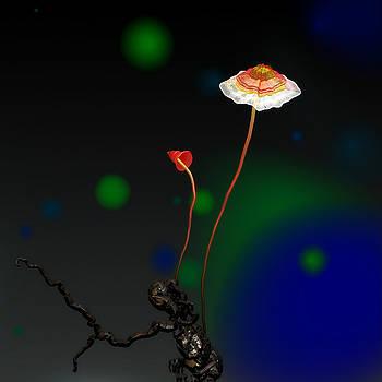 Mushroom 1 by GuoJun Pan