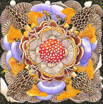 Mushroom Mandala by Catherine G McElroy