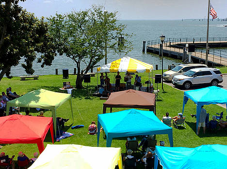 Music on the Bay by Carolyn Ricks