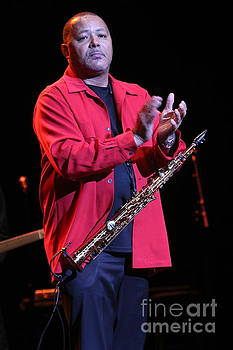 Musician Najee by Concert Photos