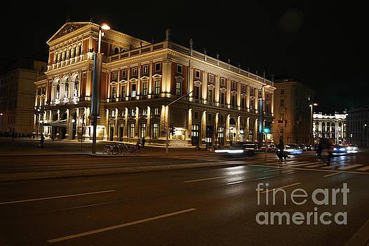 Musikverein concert hall in Vienna by David Birchall