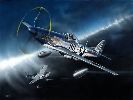 Mustang Thunder by C S Bailey