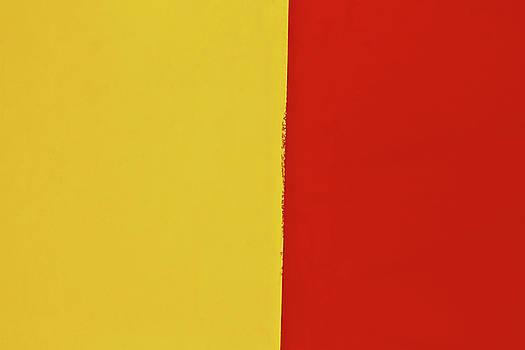 Mustard Ketchup Abstract by Tony Grider