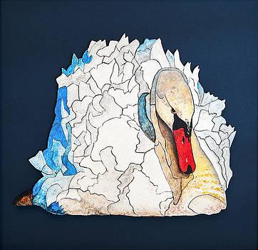 Mute Swan by Wendell Fiock